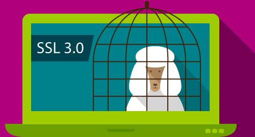 ssl3-poodle-vulnerability
