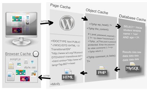 Видовете кеширане в WordPress.