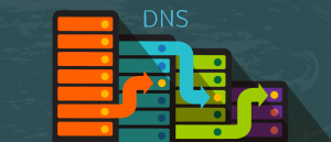 Levels of a Domain Name in the DNS Index