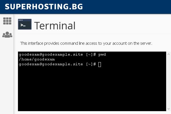 SSH достъп до хостинг акаунта директно през cPanel.