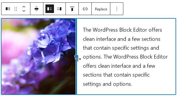 Блокът Media & Text съдържа едновременно картинка и блок Paragraph.